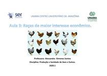 Aula 3_ Raças de interesse econômico_2020 1
