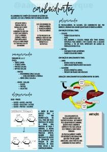 Carboidratos OK