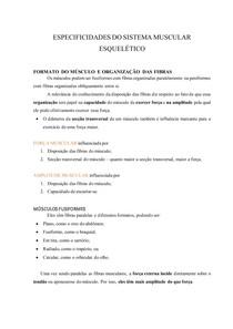 ESPECIFICIDADES DO SISTEMA MUSCULAR ESQUELÉTICO