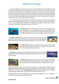 Medicina de Tartarugas Marinhas
