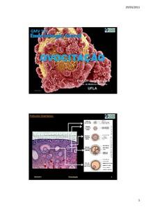 4. UFLA 2011 1 Embriologia Geral JerryBorges Ovocitacao 29marco2011 MINISLIDES