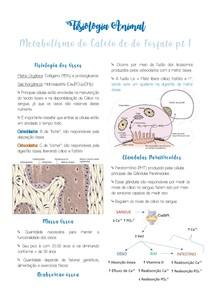 Resumo Metabolsimo do Ca e do Fosfato pt1 - Fisiologia Animal