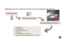 Regulação do ambiente dentro das instalações de suínos