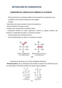 APOSTILA BIOQUÍMICA BASICA METAB. CARBOIDRATOS LIPIDEOS E PROTEINAS