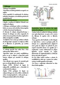 anticorpo e iggs