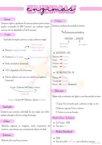 Enzimas - Bioquímica