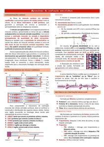 Mecanismo de contração miocárdica