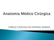 Anatomia Médico Cirúrgica - CABEÇA PESCOÇO DE GRANDES ANIMAIS - Aula 2