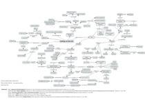 Mapa mental-Esôfago de Barrett
