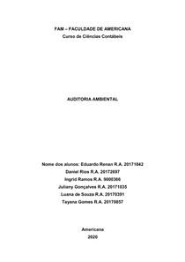 Auditoria Amiental