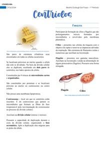 Citologia - Centríolos