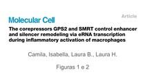 GPS2 e SMRT controlando enhancer/silencer no lócus Ccl2
