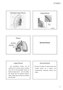derrame pleural pneumotórax atelectasia