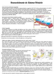 Desenvolvimento do Sistema Urinário