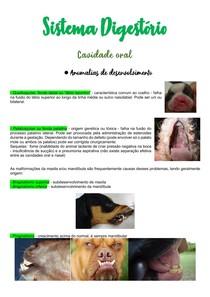 Sistema Digestório - Anatomia Patológica com fotos