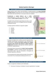 Medula Espinhal e Meninges