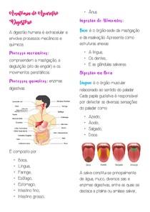 Anatomia do Aparelho Digestório
