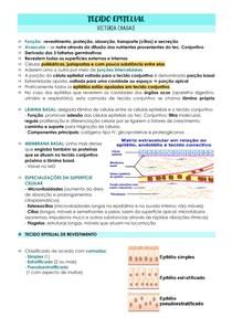 TECIDO EPITELIAL - revestimento e glandular
