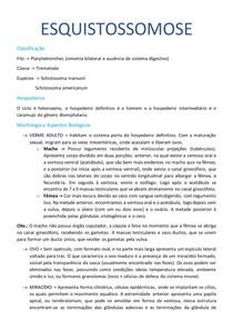 Esquistossomose - Parasiotologia