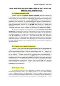 PRINCIPIOLOGIA DO PROCESSO DO TRABALHO - PRINCÍPIOS DO PROCESSO CIVIL - (Processo do Trabalho)