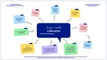 Mapa mental - Lidocaína