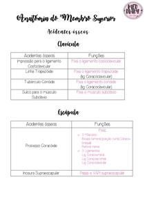 Acidentes ósseos - Membro superior