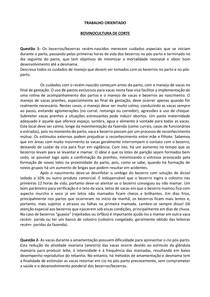 TRABALHO ORIENTADO- BOVINOCULTURA DE CORTE- ADRIELI LOPES