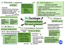 Mapa mental da segunda aula de Sociologia Organizacional