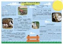 Bem Estar e Sustentabilidade na Caprinocultura