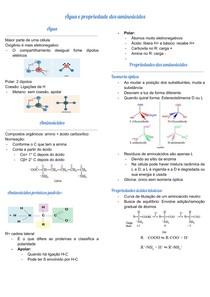 Água e propriedades dos aminoácidos