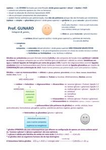 Lipídeos e Carboidratos prof Gunaro