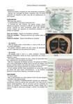 Resumo - Envoltórios e cavidades