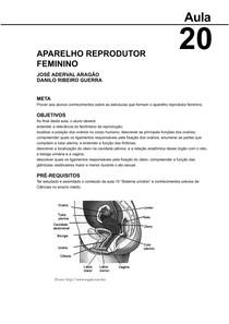 Aparelho reprodutor feminino   aula 20 elem. de anat. human.