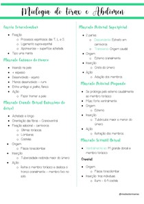 Miologia da tórax e do abdomen
