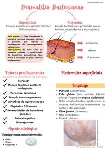 Dermatites Bacterianas cães e gatos