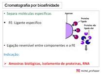 Cromatografia por bioafinidade