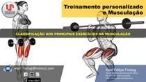 Classificação dos principais exercícios na Musculação (parte II)