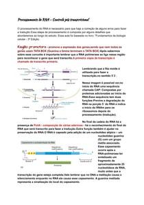 Processamento de RNA, controle pós transcricional