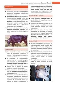 Tuberculose Bovina