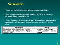 Aula   Aminoácidos e proteínas