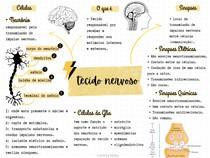 Tecido Nervoso - MAPA MENTAL BÁSICO