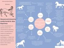 Desenvolvimento embrionário dos Equinos