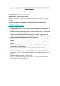 exames bacteriológicos