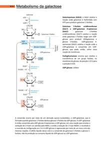 Metabolismo da galactose - Bases Celulares e Moleculares 2