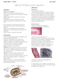 Aspectos histológicos esôfago e estômago