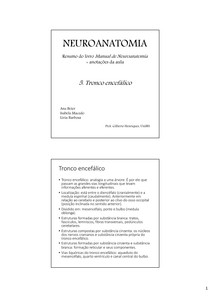Neuroanatomia - 5. Tronco
