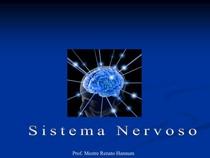 aula sistema nervoso radio (1)