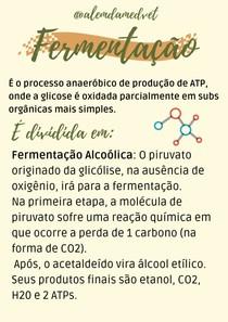 Fermentação - Bioquímica