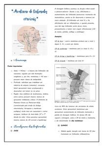 Avaliação dos linfonodos cervicais