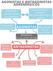 Antagonistas e agonistas colinérgicos